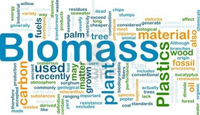 9914872-background-concept-illustration-of-biomass-renewable-material