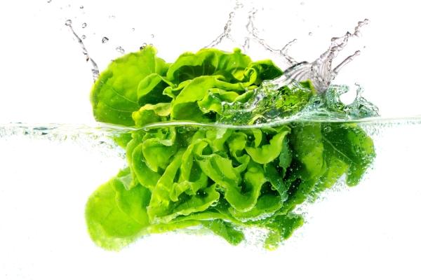 lettuce-washing